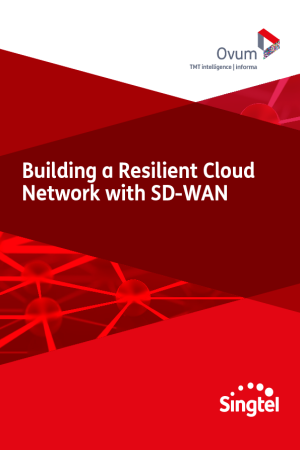Building a Resilient Cloud Network with SD-WAN